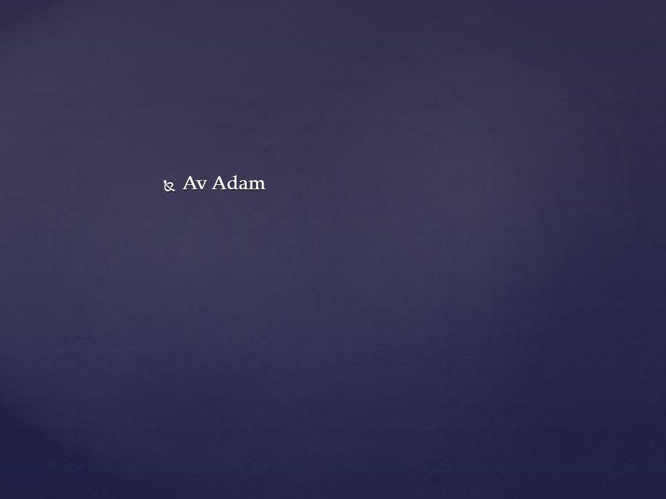  Av Adam