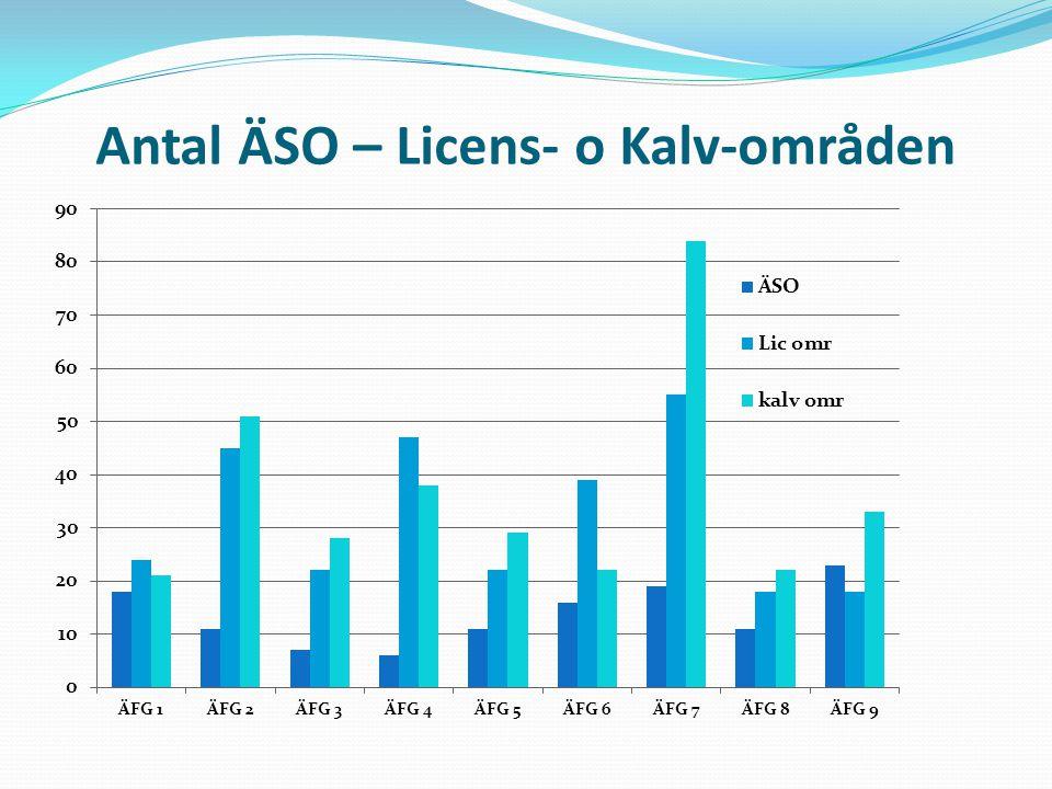 Antal ÄSO – Licens- o Kalv-områden