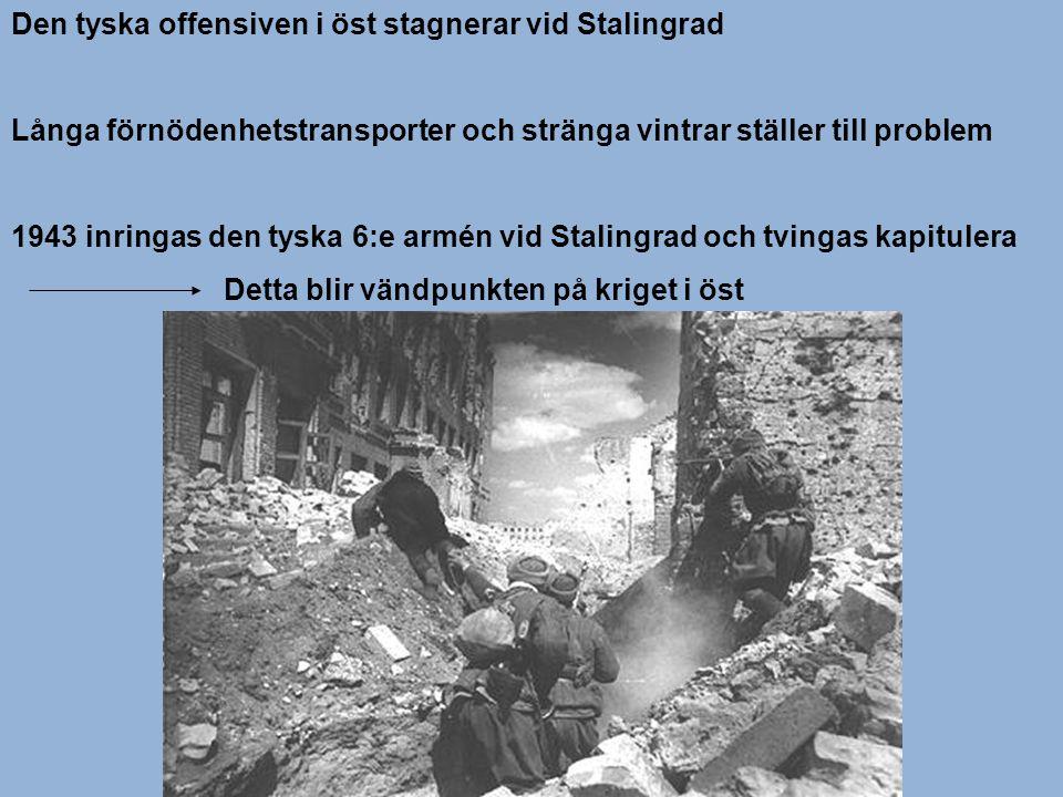 Den tyska offensiven i öst stagnerar vid Stalingrad Långa förnödenhetstransporter och stränga vintrar ställer till problem 1943 inringas den tyska 6:e