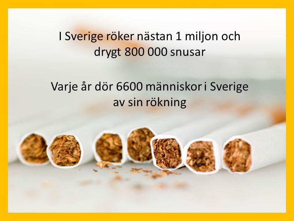 I Sverige röker nästan 1 miljon och drygt 800 000 snusar Varje år dör 6600 människor i Sverige av sin rökning