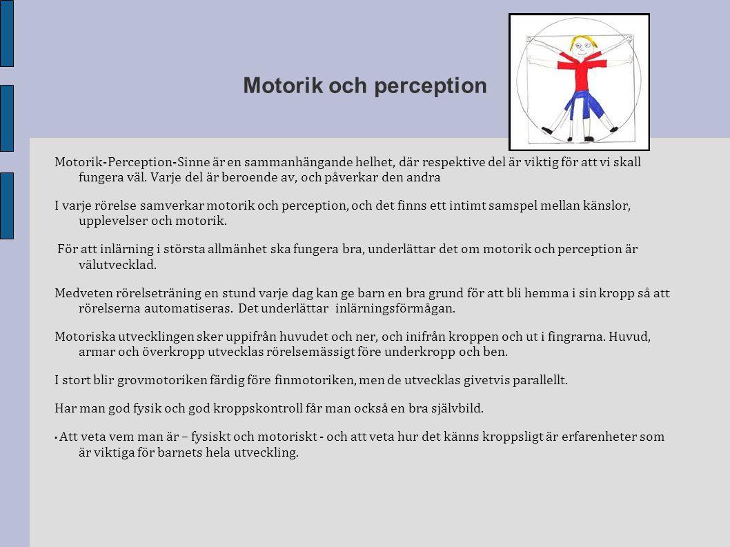 Motorik och perception Motorik-Perception-Sinne är en sammanhängande helhet, där respektive del är viktig för att vi skall fungera väl. Varje del är b