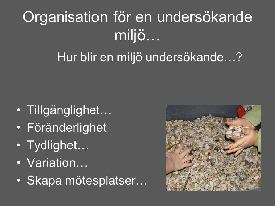 Organisation för en undersökande miljö… Hur blir en miljö undersökande…? •Tillgänglighet… •Föränderlighet •Tydlighet… •Variation… •Skapa mötesplatser…