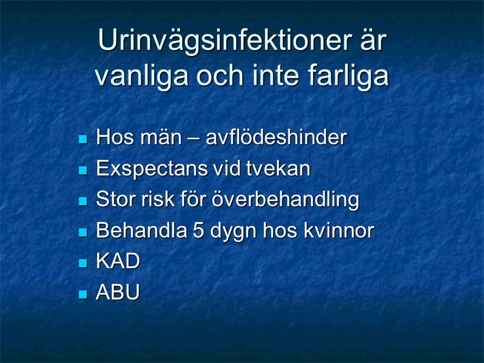 Urinvägsinfektioner är vanliga och inte farliga  Hos män – avflödeshinder  Exspectans vid tvekan  Stor risk för överbehandling  Behandla 5 dygn ho