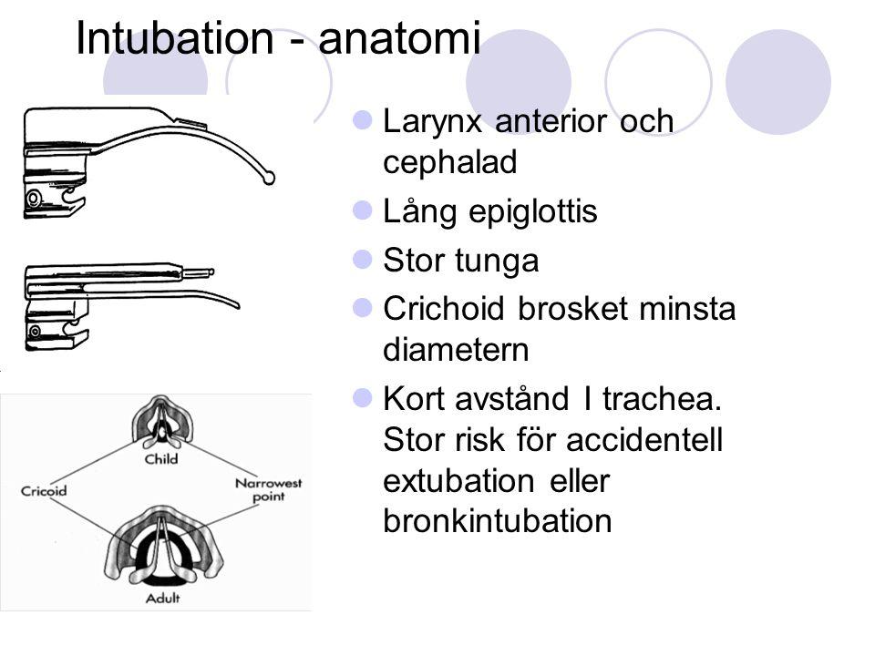 Intubation - anatomi  Larynx anterior och cephalad  Lång epiglottis  Stor tunga  Crichoid brosket minsta diametern  Kort avstånd I trachea.