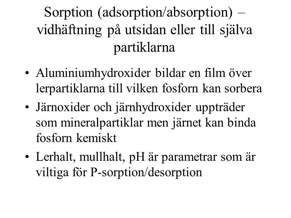 Sorption (adsorption/absorption) – vidhäftning på utsidan eller till själva partiklarna •Aluminiumhydroxider bildar en film över lerpartiklarna till v