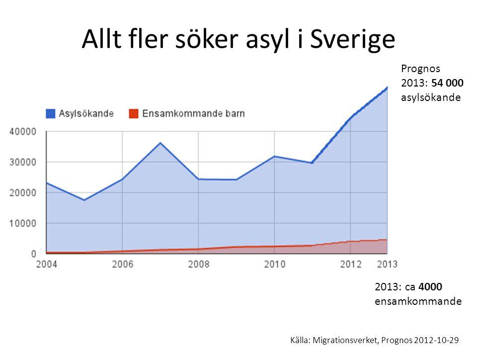Allt fler söker asyl i Sverige Prognos 2013: 54 000 asylsökande Asylsökande 2012: 44 000 Källa: Migrationsverket, Prognos 2012-10-29 2013: ca 4000 ens
