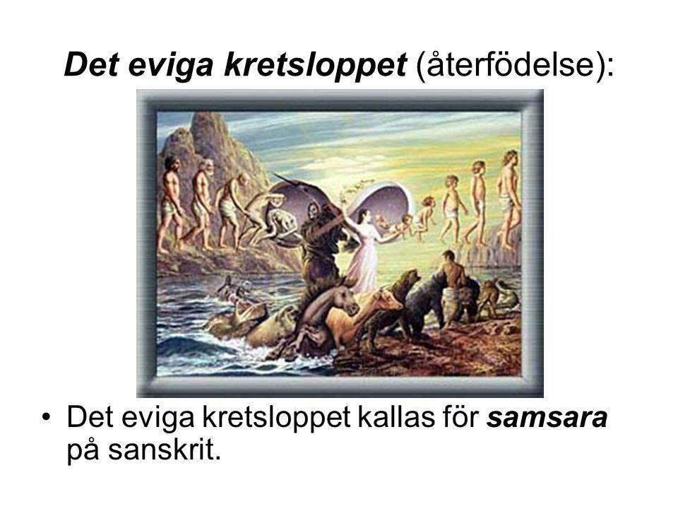 Det eviga kretsloppet (återfödelse): •Det eviga kretsloppet kallas för samsara på sanskrit.