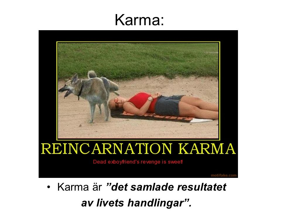 """Karma: •Karma är """"det samlade resultatet av livets handlingar""""."""