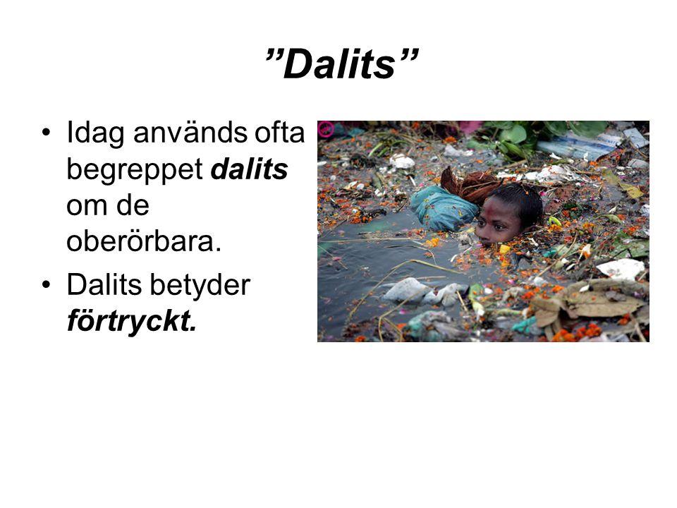 """""""Dalits"""" •Idag används ofta begreppet dalits om de oberörbara. •Dalits betyder förtryckt."""