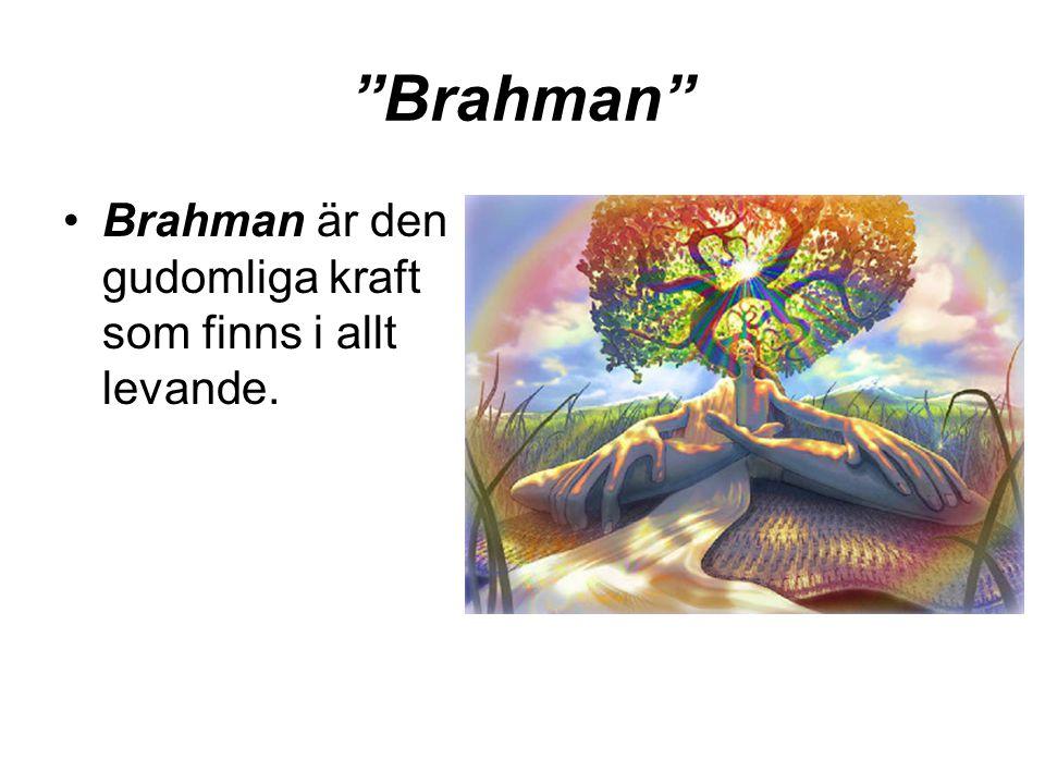"""""""Brahman"""" •Brahman är den gudomliga kraft som finns i allt levande."""