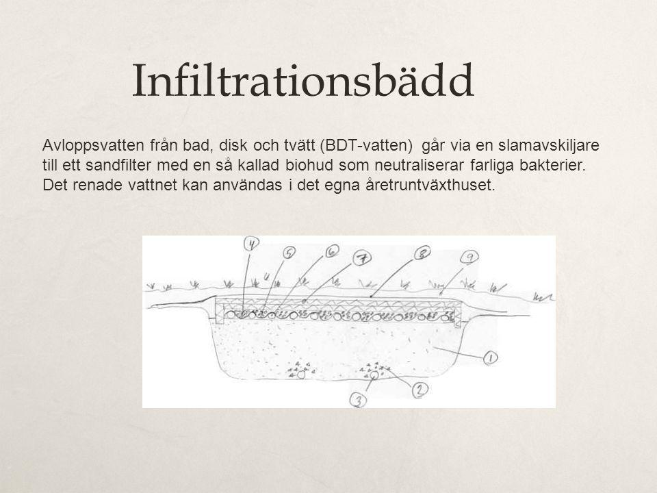 Infiltrationsbädd Avloppsvatten från bad, disk och tvätt (BDT-vatten) går via en slamavskiljare till ett sandfilter med en så kallad biohud som neutraliserar farliga bakterier.