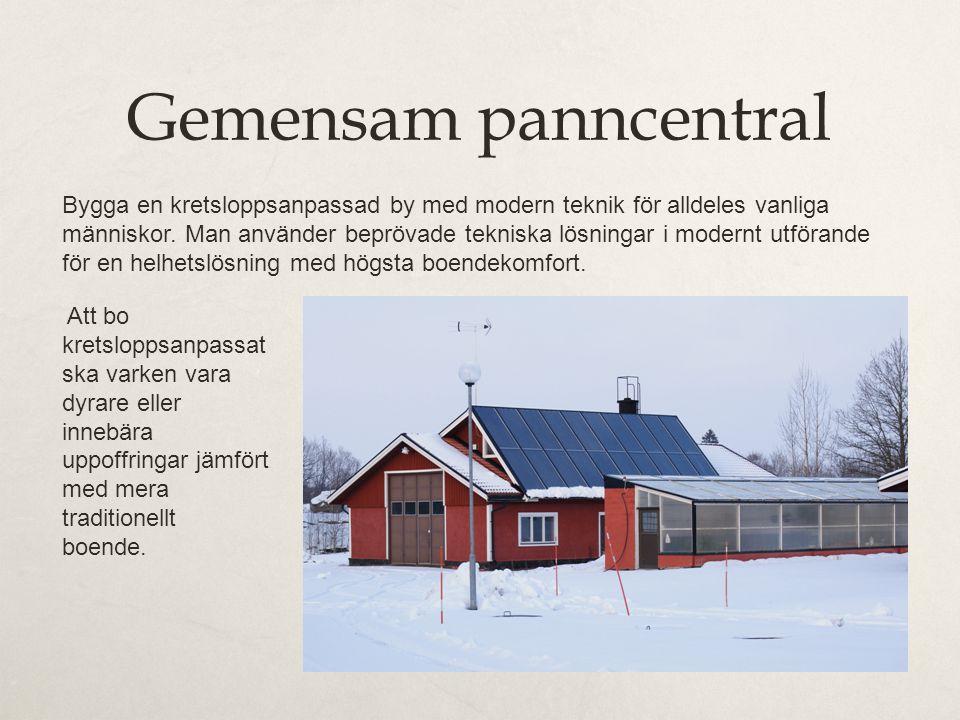 Gemensam panncentral Bygga en kretsloppsanpassad by med modern teknik för alldeles vanliga människor.