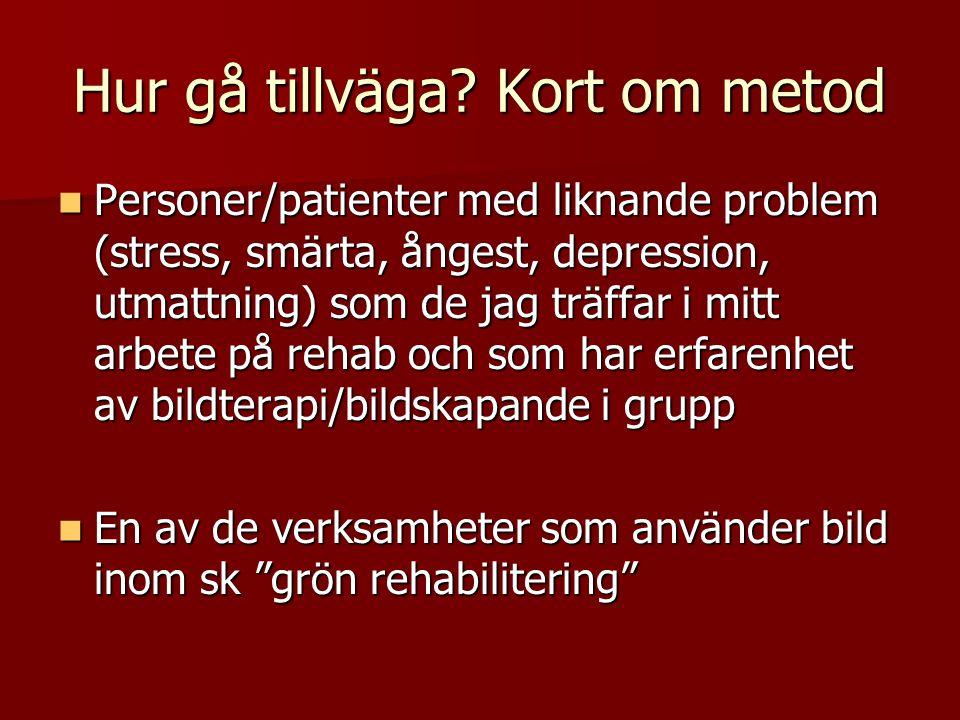 Hur gå tillväga? Kort om metod  Personer/patienter med liknande problem (stress, smärta, ångest, depression, utmattning) som de jag träffar i mitt ar