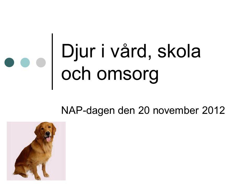 Djur i vård, skola och omsorg NAP-dagen den 20 november 2012