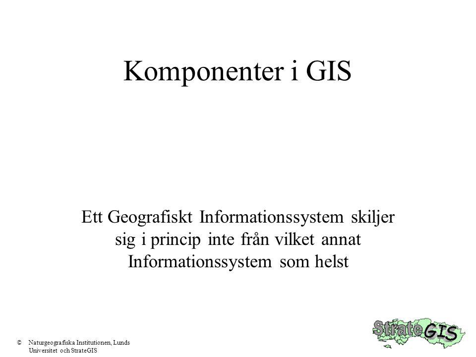 Komponenter i GIS Ett Geografiskt Informationssystem skiljer sig i princip inte från vilket annat Informationssystem som helst ©Naturgeografiska Insti