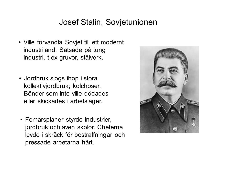 •Propaganda målade bilden av Stalin som en far för hela folket.