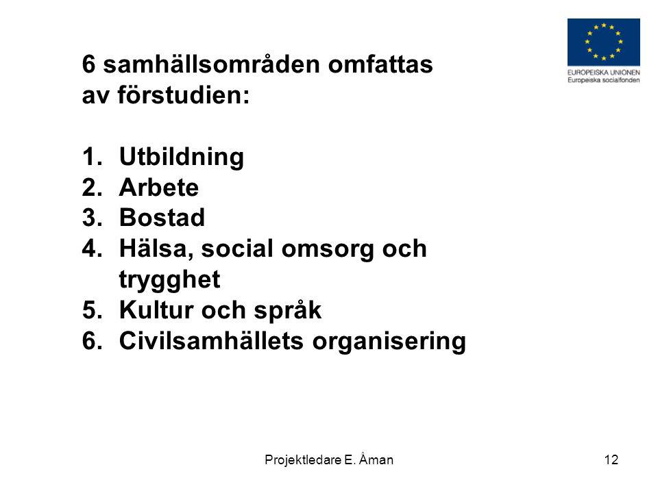 6 samhällsområden omfattas av förstudien: 1.Utbildning 2.Arbete 3.Bostad 4.Hälsa, social omsorg och trygghet 5.Kultur och språk 6.Civilsamhällets orga