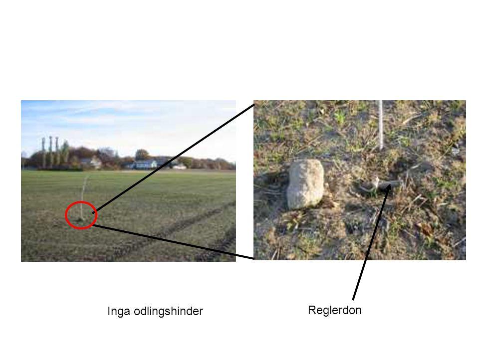Inga odlingshinder Reglerdon