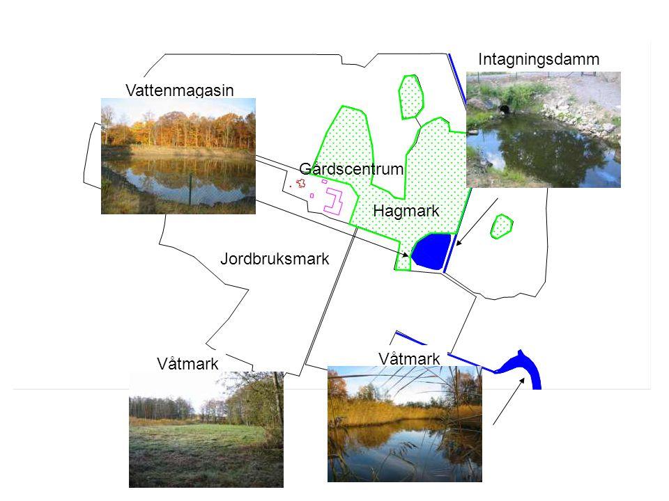 Jordbruksmark Hagmark Vattenmagasin Våtmark Intagningsdamm Våtmark Gårdscentrum