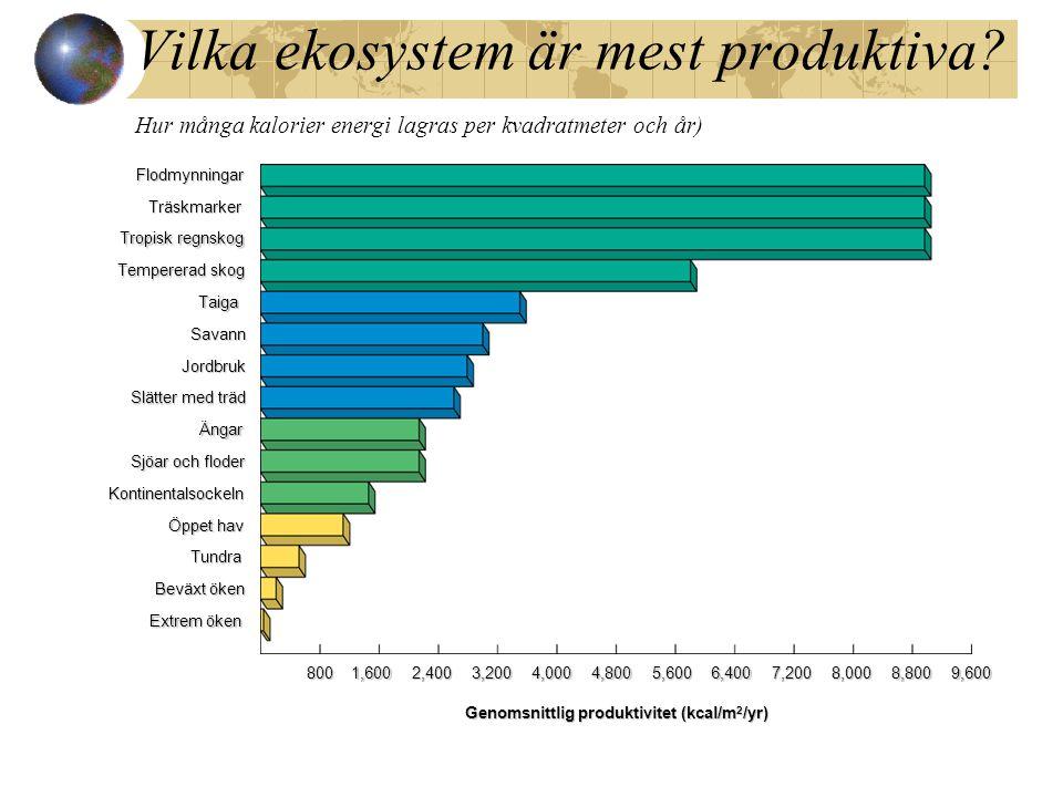 Vilka ekosystem är mest produktiva? Hur många kalorier energi lagras per kvadratmeter och år)Flodmynningar Träskmarker Träskmarker Tropisk regnskog Te