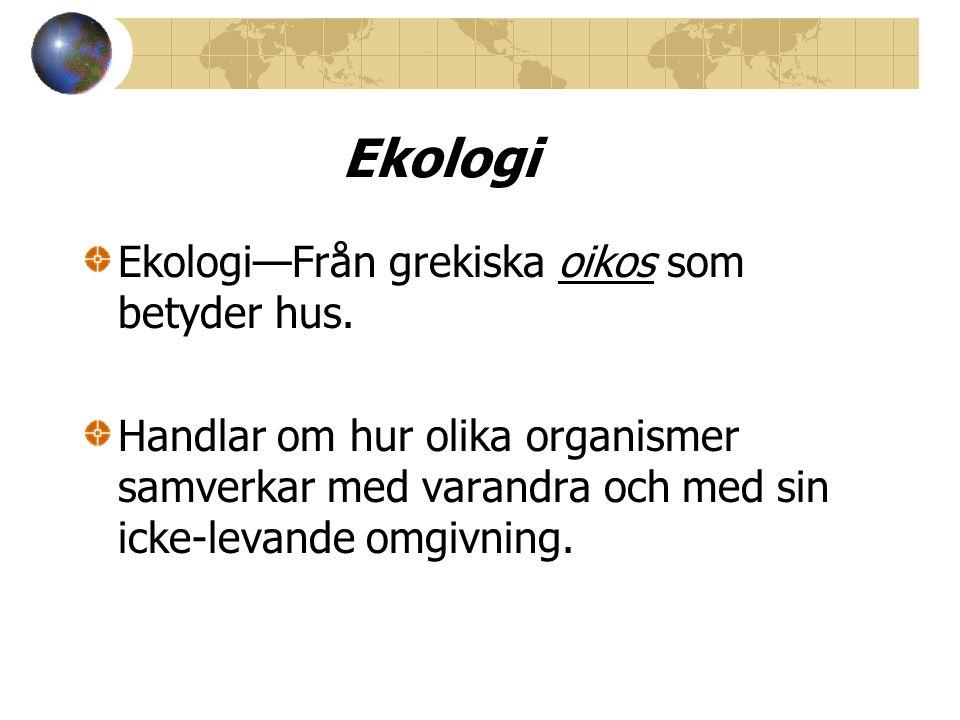 Ekologi Ekologi—Från grekiska oikos som betyder hus. Handlar om hur olika organismer samverkar med varandra och med sin icke-levande omgivning.