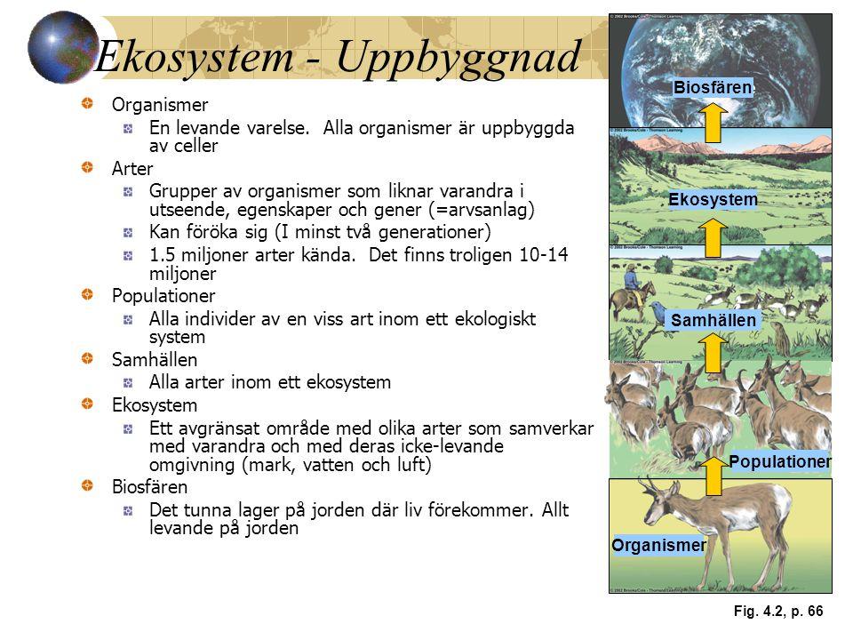 Ekosystem - Uppbyggnad Organismer En levande varelse. Alla organismer är uppbyggda av celler Arter Grupper av organismer som liknar varandra i utseend