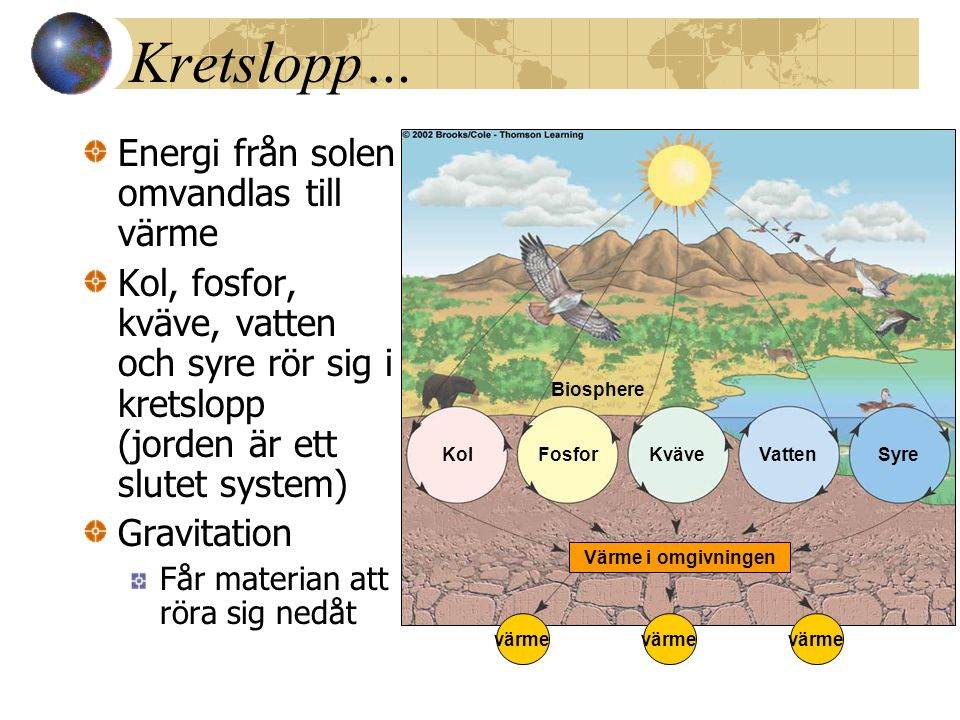 Kretslopp… Energi från solen omvandlas till värme Kol, fosfor, kväve, vatten och syre rör sig i kretslopp (jorden är ett slutet system) Gravitation Få