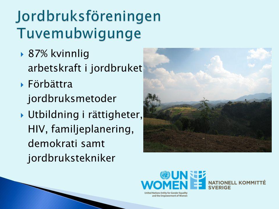  87% kvinnlig arbetskraft i jordbruket  Förbättra jordbruksmetoder  Utbildning i rättigheter, HIV, familjeplanering, demokrati samt jordbrukstekniker