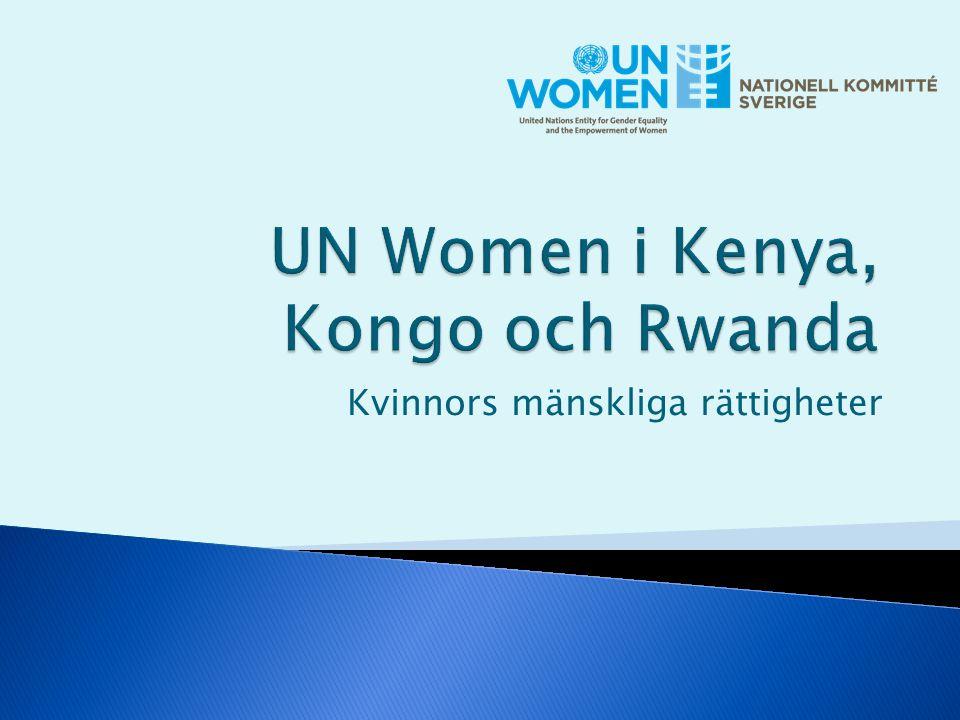 Kvinnors mänskliga rättigheter