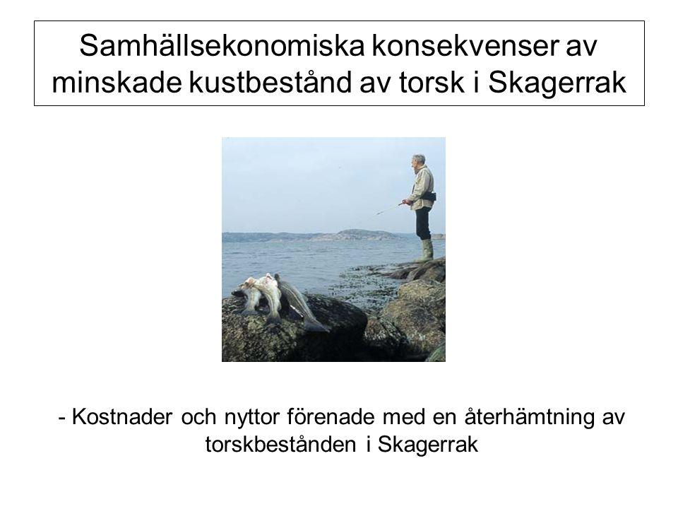 Samhällsekonomiska konsekvenser av minskade kustbestånd av torsk i Skagerrak - Kostnader och nyttor förenade med en återhämtning av torskbestånden i S