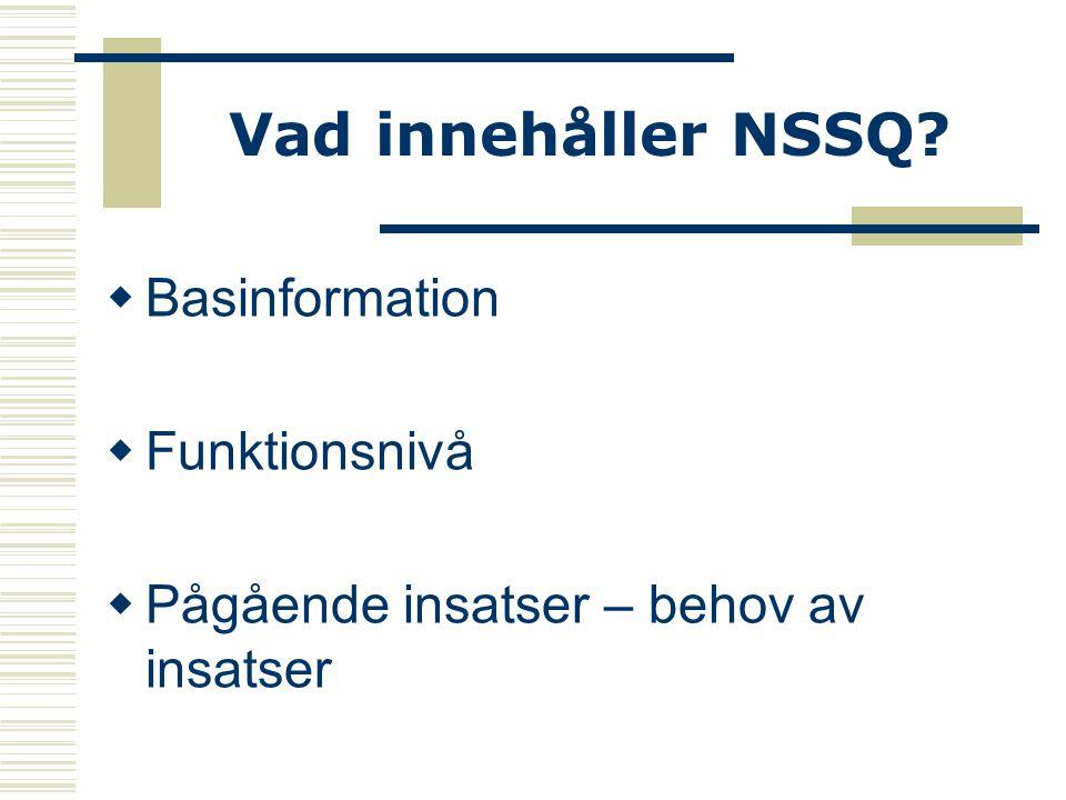 Vad innehåller NSSQ?  Basinformation  Funktionsnivå  Pågående insatser – behov av insatser