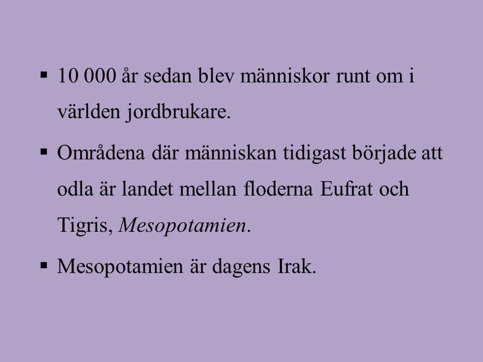 Eufrat och Tigris: Mesopotamien = Dagens Irak: