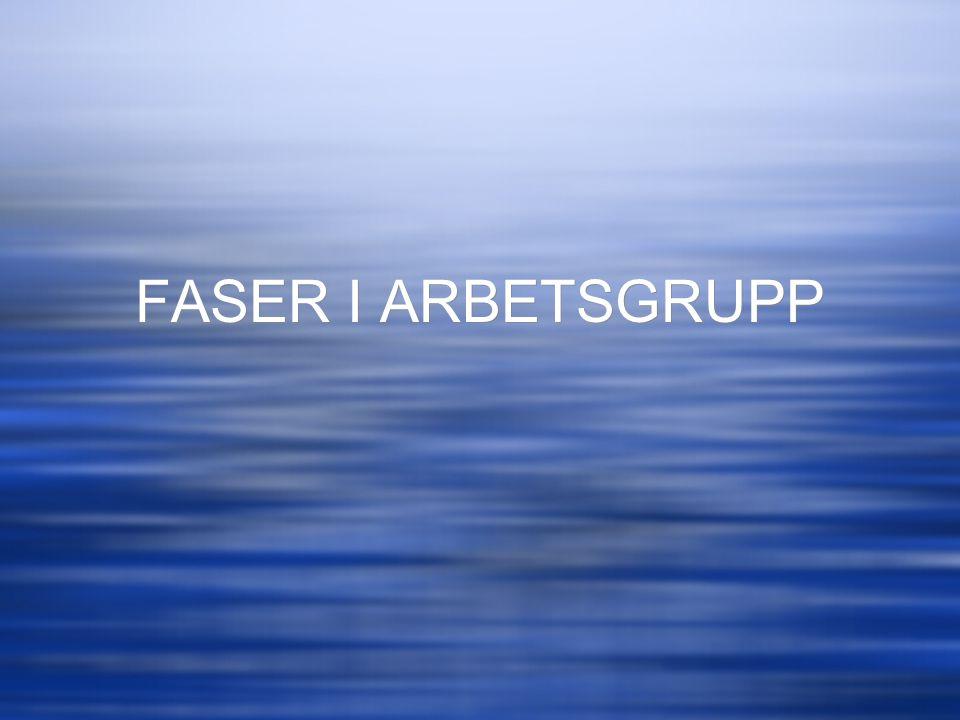 FASER I ARBETSGRUPP