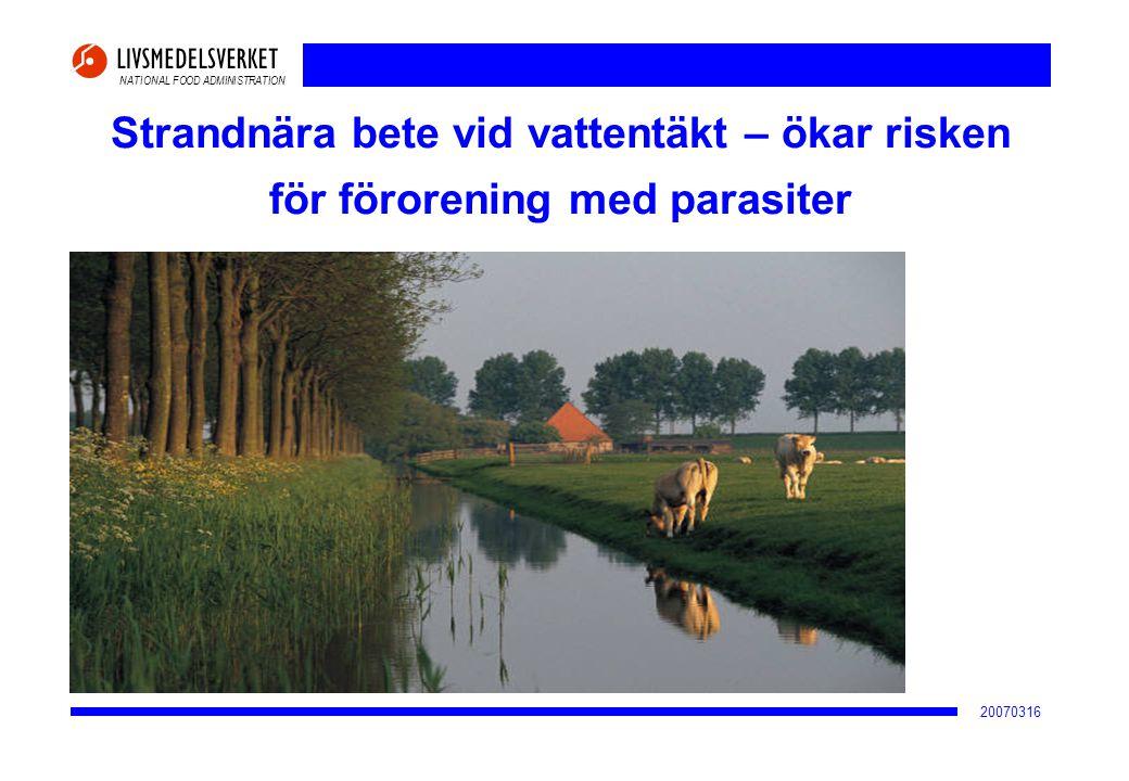 NATIONAL FOOD ADMINISTRATION 20070316 Strandnära bete vid vattentäkt – ökar risken för förorening med parasiter
