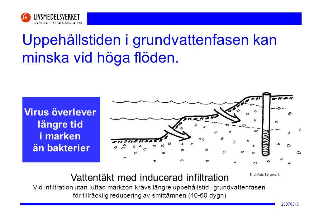 NATIONAL FOOD ADMINISTRATION 20070316 Uppehållstiden i grundvattenfasen kan minska vid höga flöden. Bild Mats Bergmark Virus överlever längre tid i ma