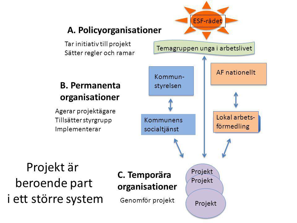 A.Policyorganisationer B. Permanenta organisationer C.