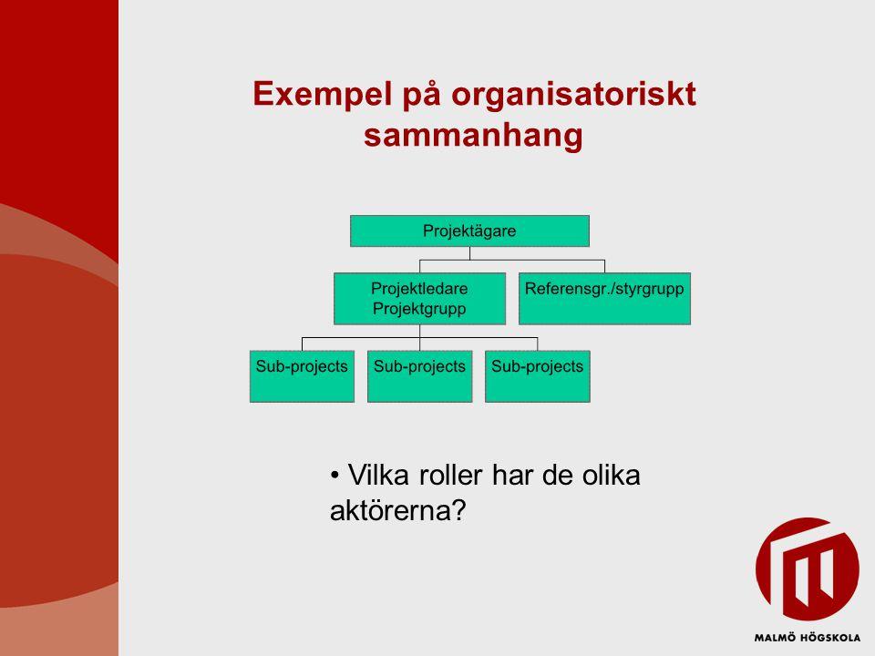 Exempel på organisatoriskt sammanhang • Vilka roller har de olika aktörerna?