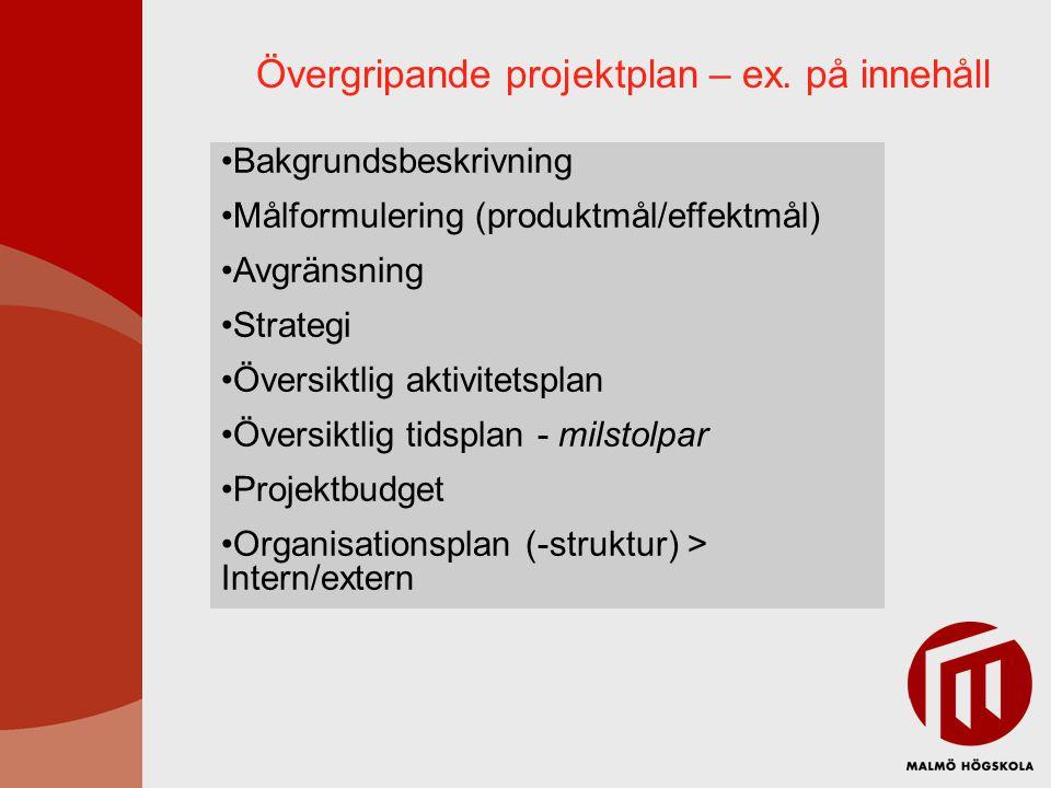 Övergripande projektplan – ex.