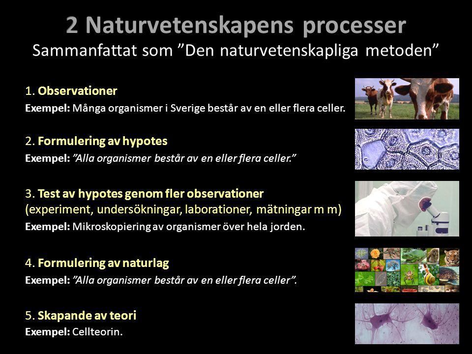 1. Observationer 2. Formulering av hypotes 3. Test av hypotes genom fler observationer (experiment, undersökningar, laborationer, mätningar m m) 4. Fo