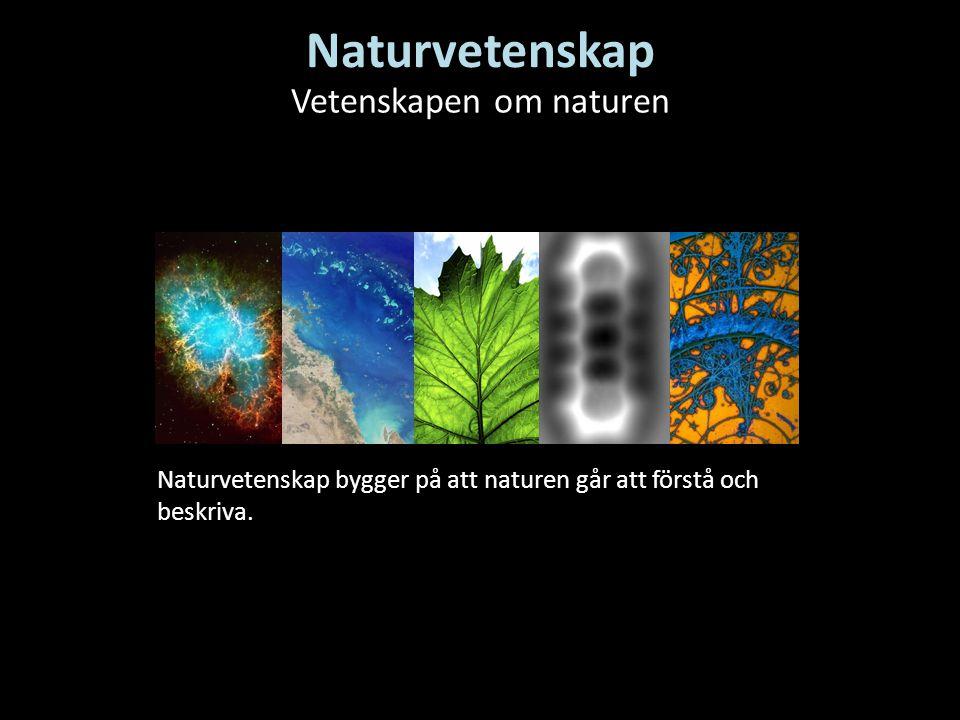 Naturvetenskap Naturvetenskap bygger på att naturen går att förstå och beskriva. Vetenskapen om naturen