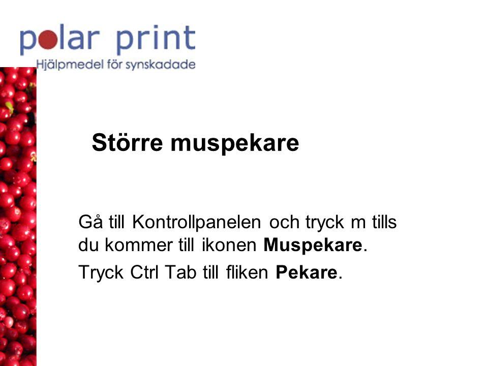 Större muspekare Gå till Kontrollpanelen och tryck m tills du kommer till ikonen Muspekare. Tryck Ctrl Tab till fliken Pekare.