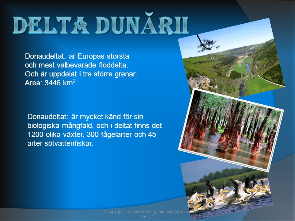 Donaudeltat: är Europas största och mest välbevarade floddelta.