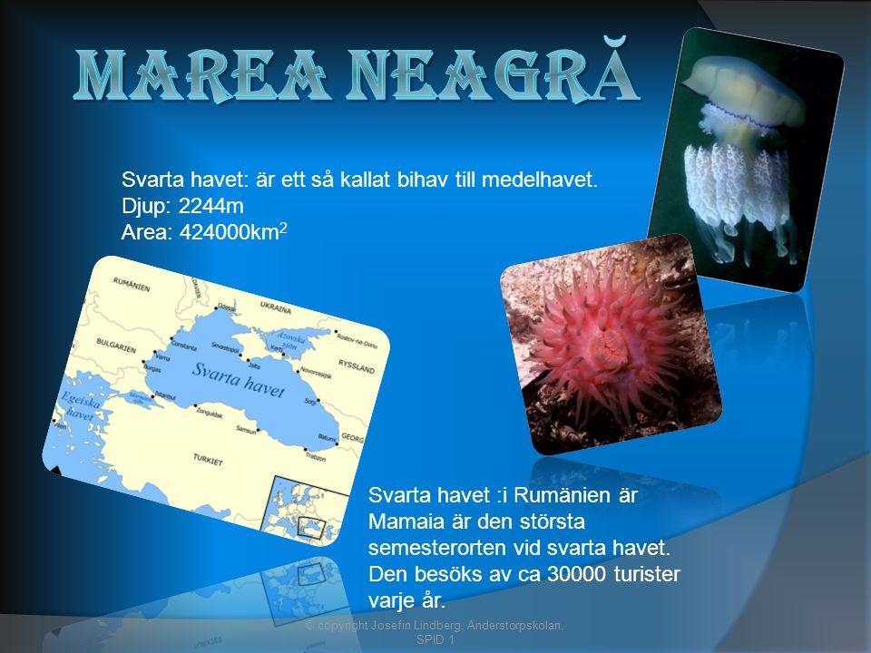Svarta havet: är ett så kallat bihav till medelhavet.