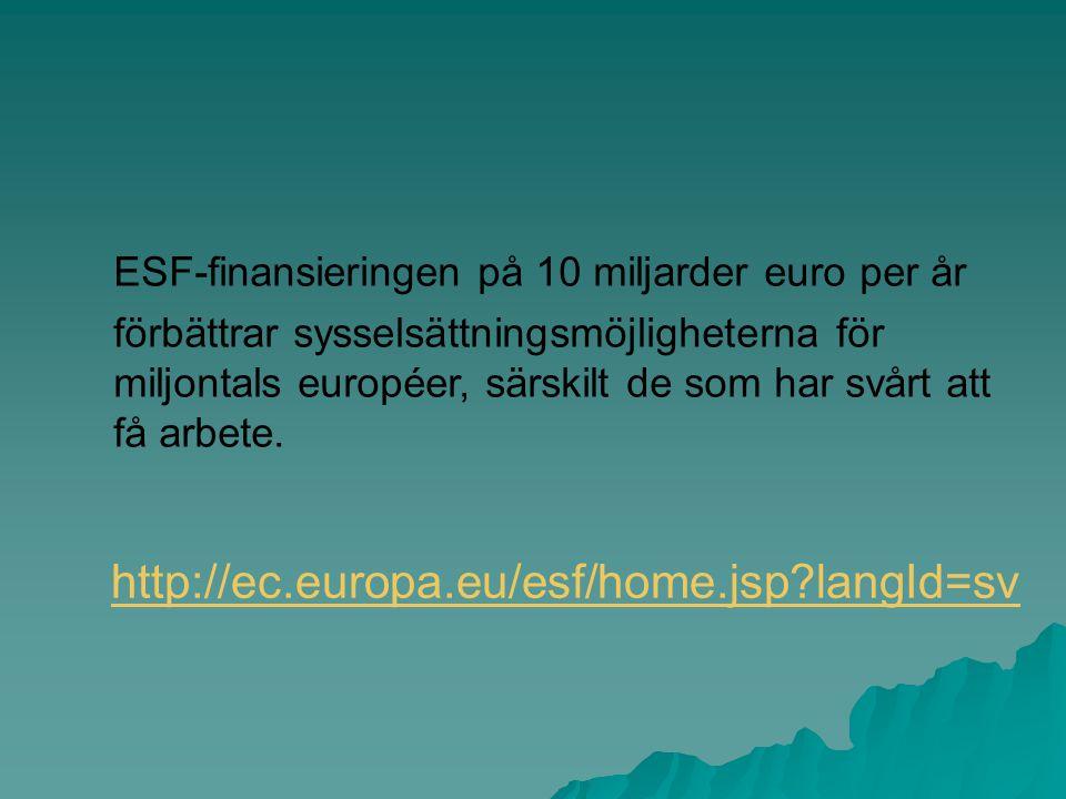 ESF-finansieringen på 10 miljarder euro per år förbättrar sysselsättningsmöjligheterna för miljontals européer, särskilt de som har svårt att få arbet