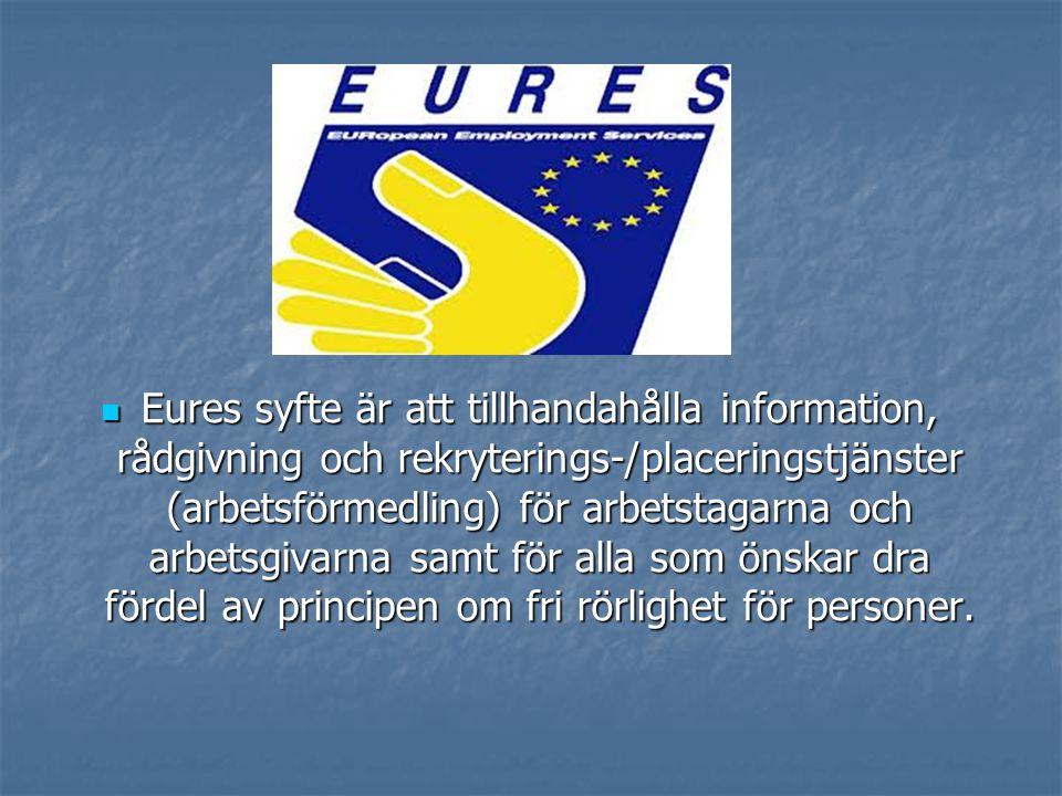  Eures syfte är att tillhandahålla information, rådgivning och rekryterings-/placeringstjänster (arbetsförmedling) för arbetstagarna och arbetsgivarn
