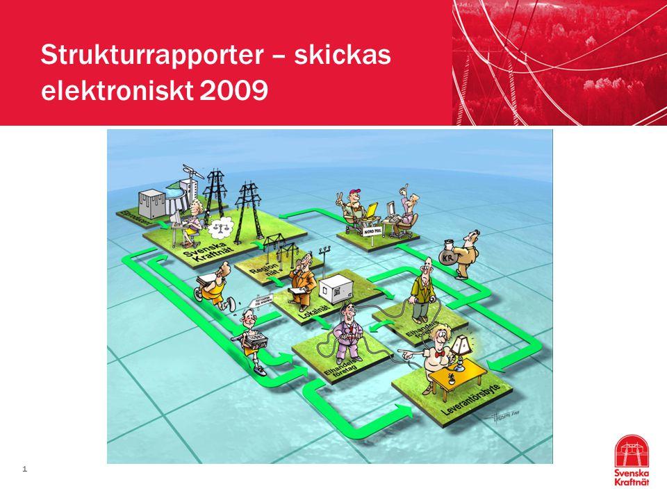 1 Strukturrapporter – skickas elektroniskt 2009