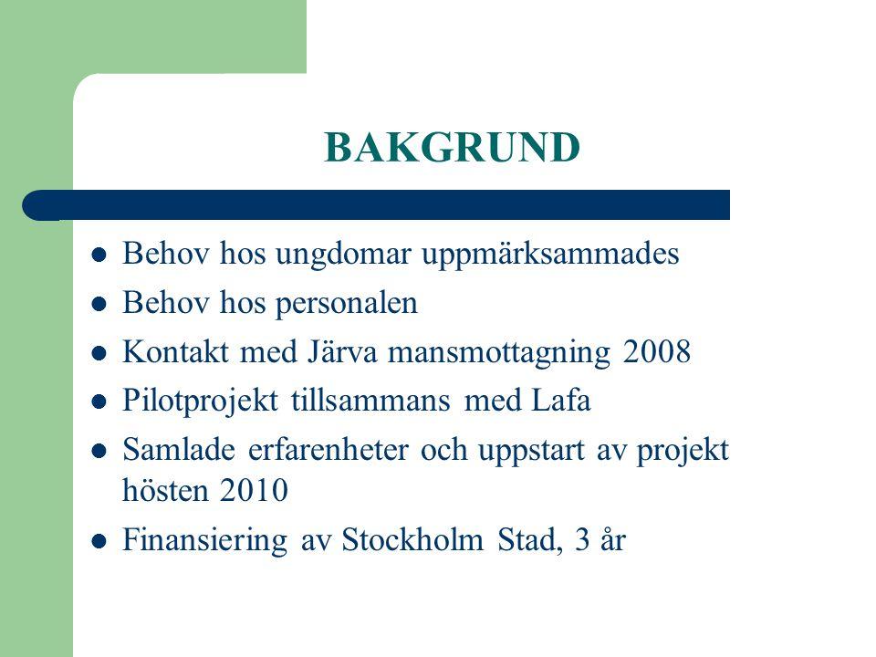 BAKGRUND  Behov hos ungdomar uppmärksammades  Behov hos personalen  Kontakt med Järva mansmottagning 2008  Pilotprojekt tillsammans med Lafa  Sam