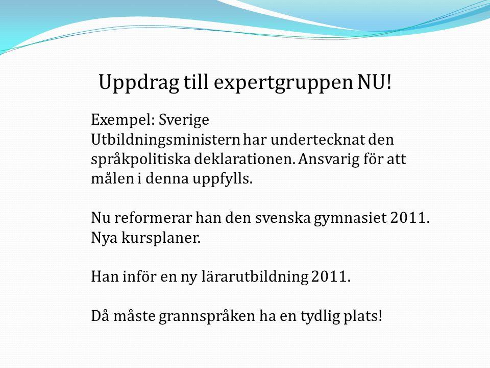 Uppdrag till expertgruppen NU! Exempel: Sverige Utbildningsministern har undertecknat den språkpolitiska deklarationen. Ansvarig för att målen i denna