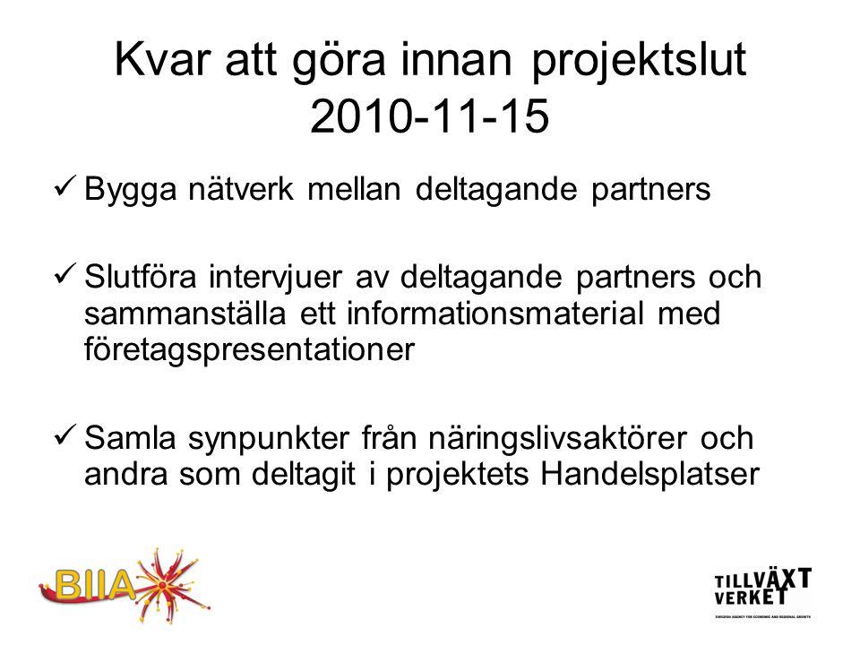 Projekt Handelsplats - Internationella affärer i Sverige  Kan vi tillsammans göra mer för att våra företagarkollegor med internationell bakgrund ska kunna utveckla sina företag tillsammans med svenska företagare.