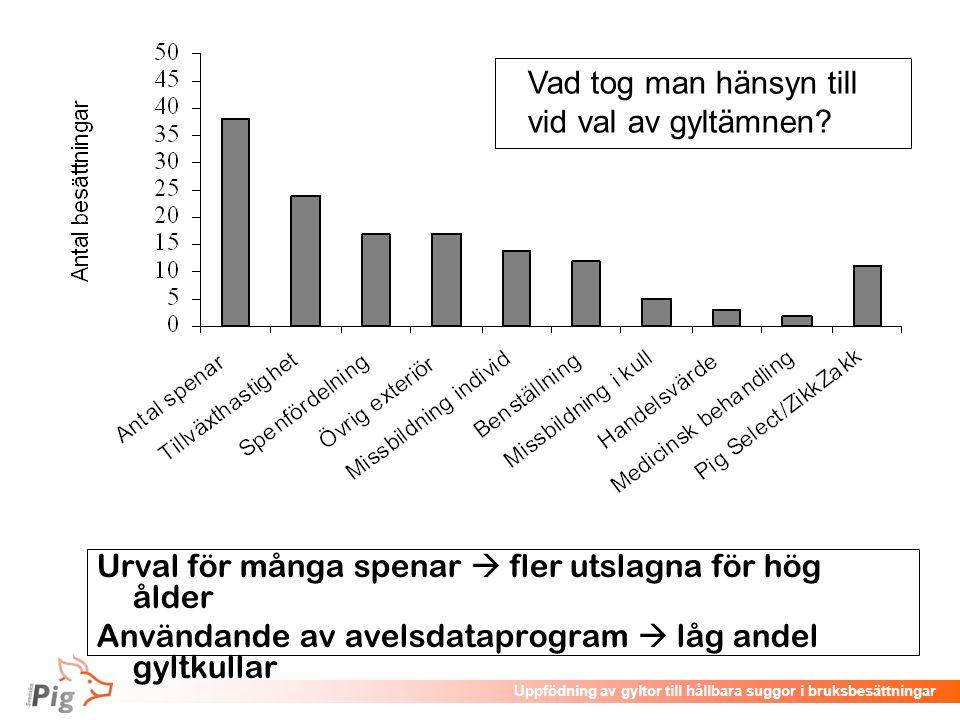 Föreläsningsrubrik / temaUppfödning av gyltor till hållbara suggor i bruksbesättningar Urval för många spenar  fler utslagna för hög ålder Användande
